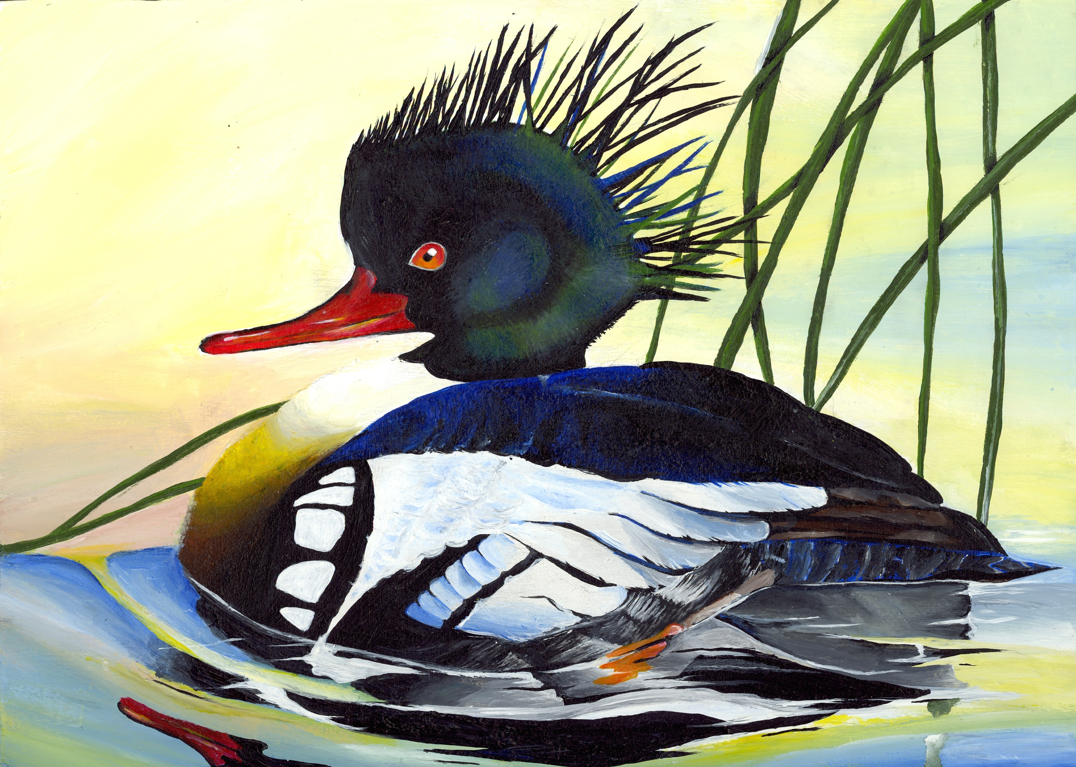 SPEARFISH Judges Spent Four Hours Sunday March 29th Viewing Hundreds Of Pieces Artwork To Find The South Dakota Junior Duck Stamp Contest Best