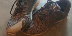 ShoesForShoeless